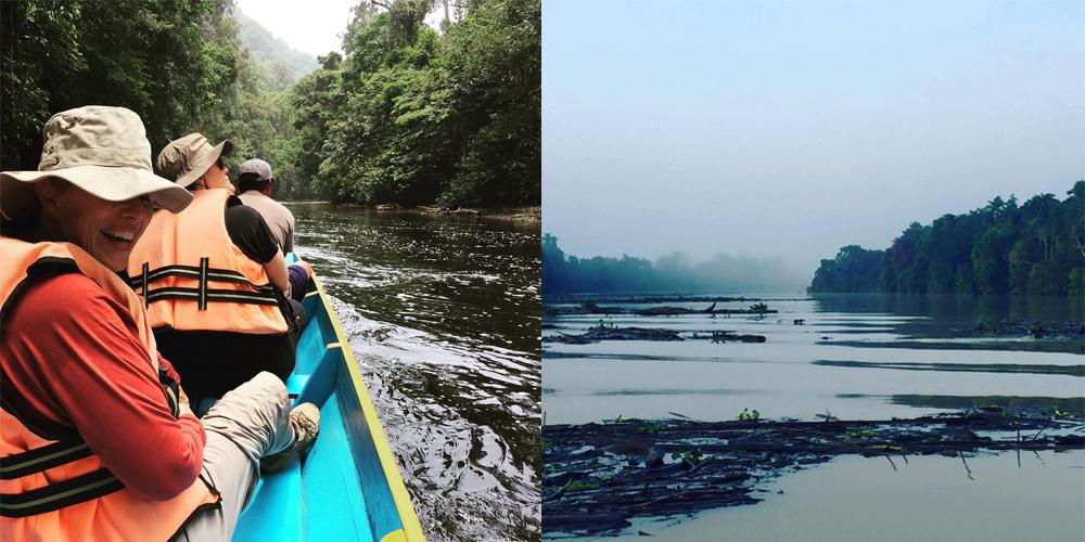 Mulu-National-Park-and-Kinabatangan-River-in-Borneo