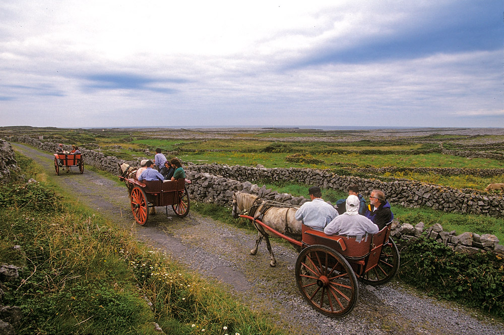 Horse carriages on inishmore Ireland